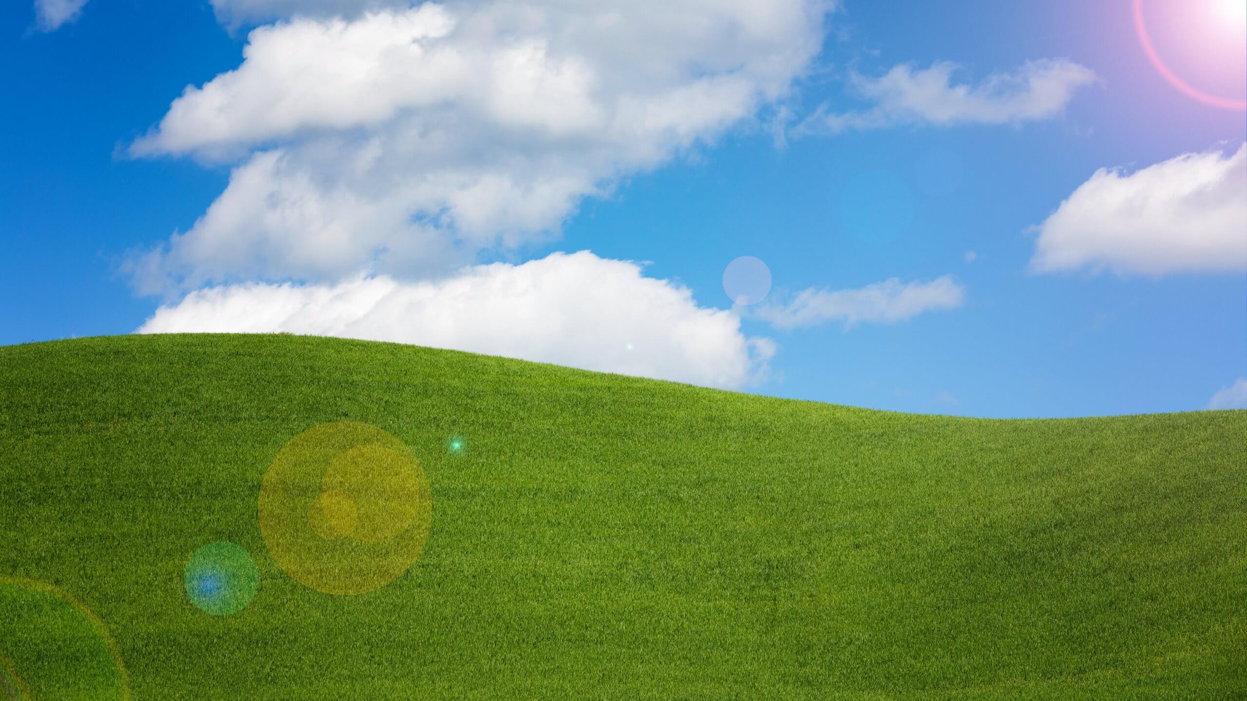 windows xp e la sicurezza informatica